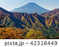 富士山 紅葉 秋の写真 42316449