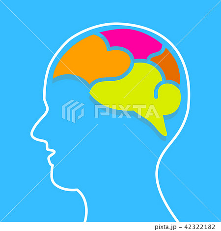 info graphics human brain design template のイラスト素材 42322182