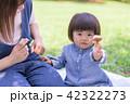 親子 ピクニック 弁当の写真 42322273