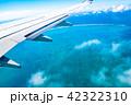 飛行機から見える景色 (石垣島) 42322310