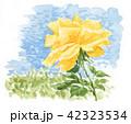 花 薔薇 水彩のイラスト 42323534