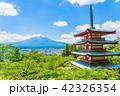 新倉山浅間公園 五重塔 富士山の写真 42326354