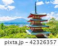 新倉山浅間公園 五重塔 富士山の写真 42326357