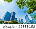 ビル 高層ビル ビル群の写真 42333168