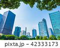 ビル 高層ビル ビル群の写真 42333173