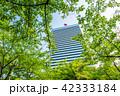 ビル 高層ビル 東京の写真 42333184