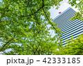 ビル 高層ビル 東京の写真 42333185