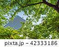 ビル 高層ビル 東京の写真 42333186