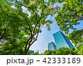 ビル 高層ビル 東京の写真 42333189