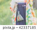 Sakura 42337185