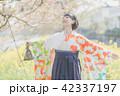Sakura 42337197