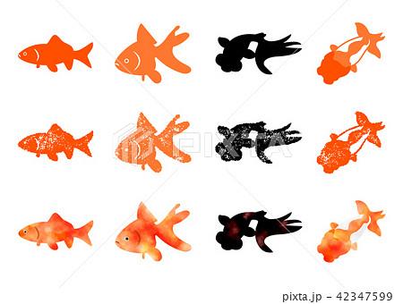198ddd61c2 金魚アイコン はんこ 水彩のイラスト素材 pixta jpg 450x339 切り絵 フリー 素材 琉金 金魚