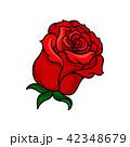 バラ 花 芽のイラスト 42348679
