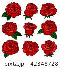 バラ 花 芽のイラスト 42348728