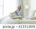 シニア男性 ベッド 42351909