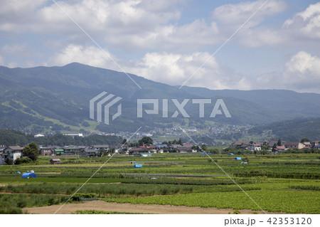長野県飯山市 信州の風景 42353120