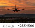 伊丹空港(大阪国際空港)への着陸 千里川 42354500