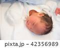 赤ちゃん 42356989