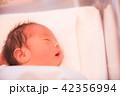 赤ちゃん 42356994
