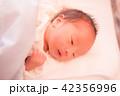 赤ちゃん 42356996