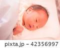 赤ちゃん 42356997