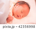 赤ちゃん 42356998