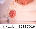 赤ちゃんの手 42357019