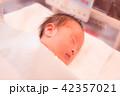 赤ちゃん 42357021
