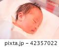 赤ちゃん 42357022