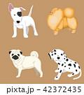 わんこ 犬 ベクタのイラスト 42372435