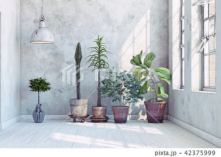 vintage wall with plants set. 42375999
