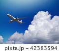 飛行機 旅客機 青空のイラスト 42383594