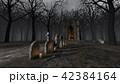 墓地 42384164