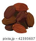 漢方や薬膳料理に使われる草果のイラスト 42393607