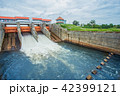 Flood, Thailand, Dam, Water, Hydroelectric Power 42399121