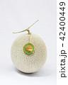 メロン マスクメロン 果物の写真 42400449