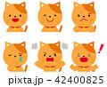 ネコの表情 42400825