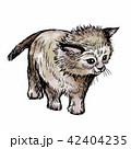ねこ ネコ 猫のイラスト 42404235