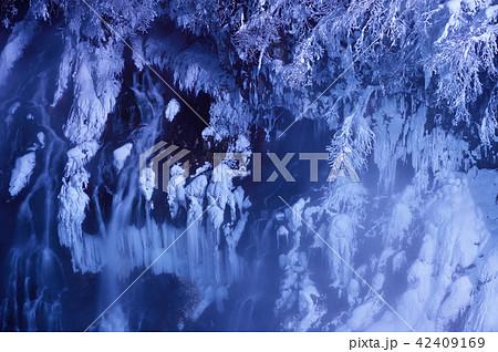 冬の白髭の滝 夜間ライトアップ(北海道・美瑛町) 42409169