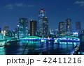 勝鬨橋 夜景 ライトアップの写真 42411216