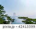 大鳴門橋 橋 鳴門海峡の写真 42413399