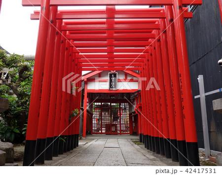日本 愛知 名古屋 大須 まねき稲荷の鳥居 Japan Aichi Nagoya Osu 42417531