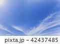 大空 42437485