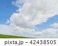 夏の青空と雲と緑 42438505