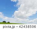 夏の青空と雲と緑 42438506