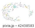 マンタと魚たち フレーム 42438583