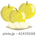 梨 果物 カットフルーツのイラスト 42439208