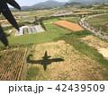 地面に映る飛行機の影 42439509