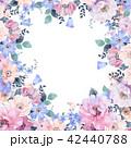 透明水彩 水彩画 花のイラスト 42440788