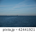 Cruise ship floating away on the waves of the sea 42441921
